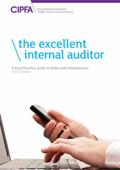 The Excellent Internal Auditor A Good Practice Guide to Skills and Competencies 2011 Edition