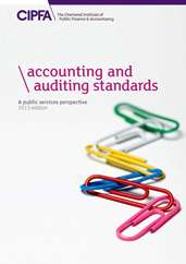 Accounting and Auditing Standards A Public Services Perspective 2013 Edition Book