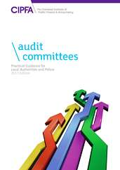 cover - audit committees