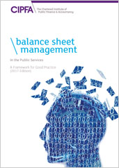 Balance Sheet Management in the Public Services A Framework for Good Practice 2017 Edition Online